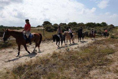 Wil jij weten wat je van paardrijden vindt? Of weet je al dat je het fantastisch gaat vinden, maar heb je nog nooit op een paard gereden? Dan is deze duinrit voor beginners echt wat voor jou!